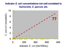 Fecal Indicator Bacteria