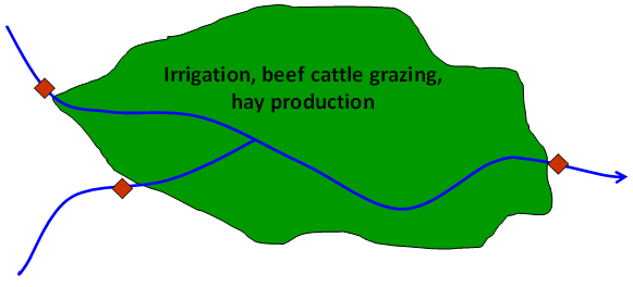 irrigation, beef cattle grazing, hay production